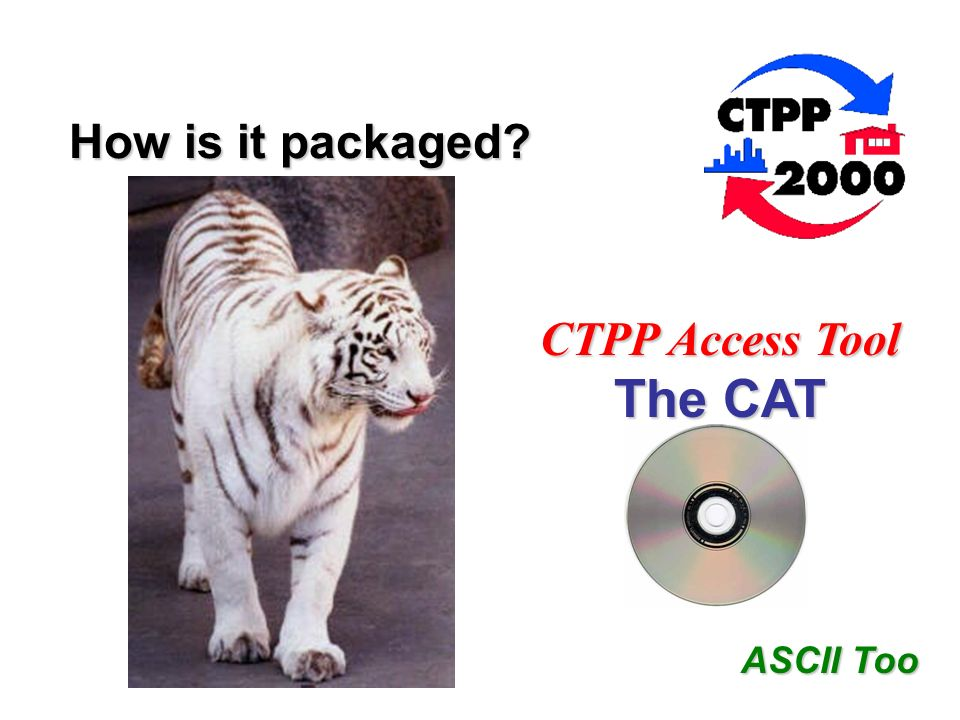 The CAT CTPP Access Tool How is it packaged ASCII Too