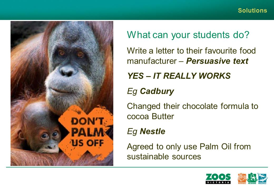 Solutions What can your students do.