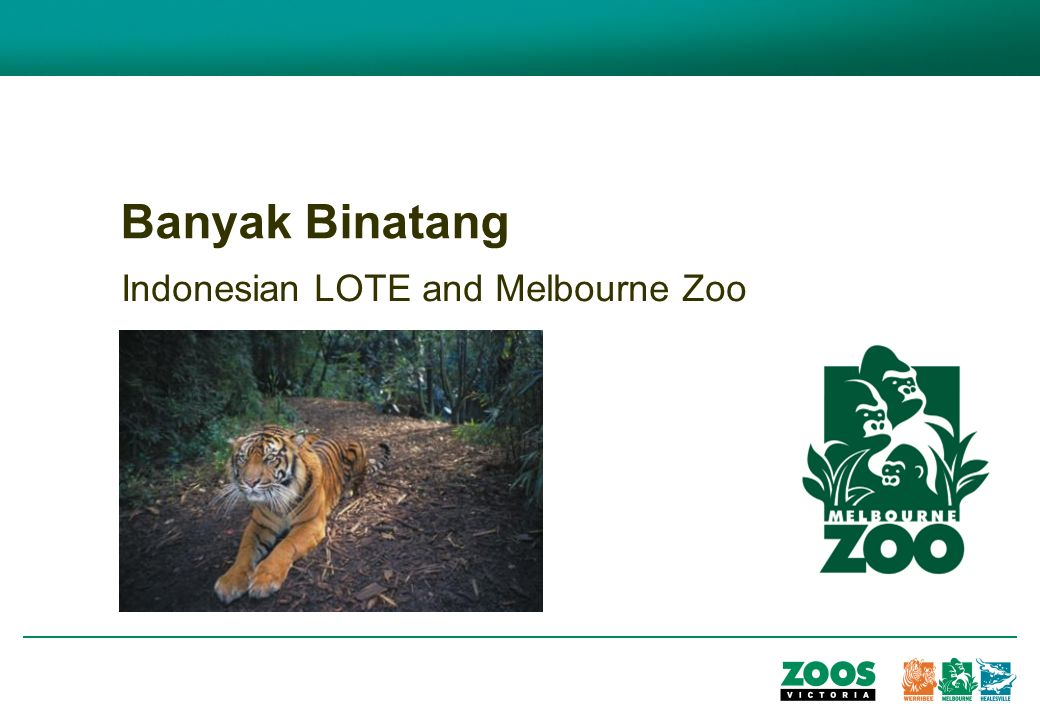 Banyak Binatang Indonesian LOTE and Melbourne Zoo