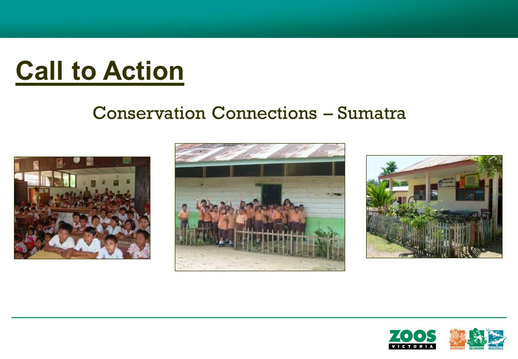 Call to Action Conservation Connections – Sumatra