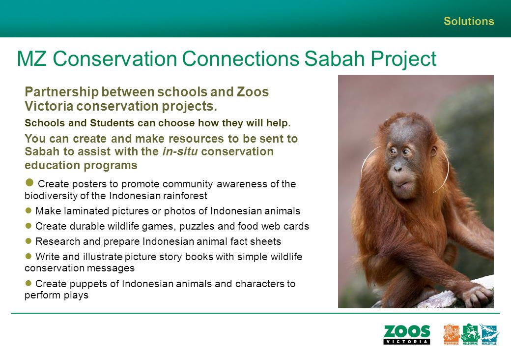 MZ Conservation Connections Sabah Project Solutions Partnership between schools and Zoos Victoria conservation projects.