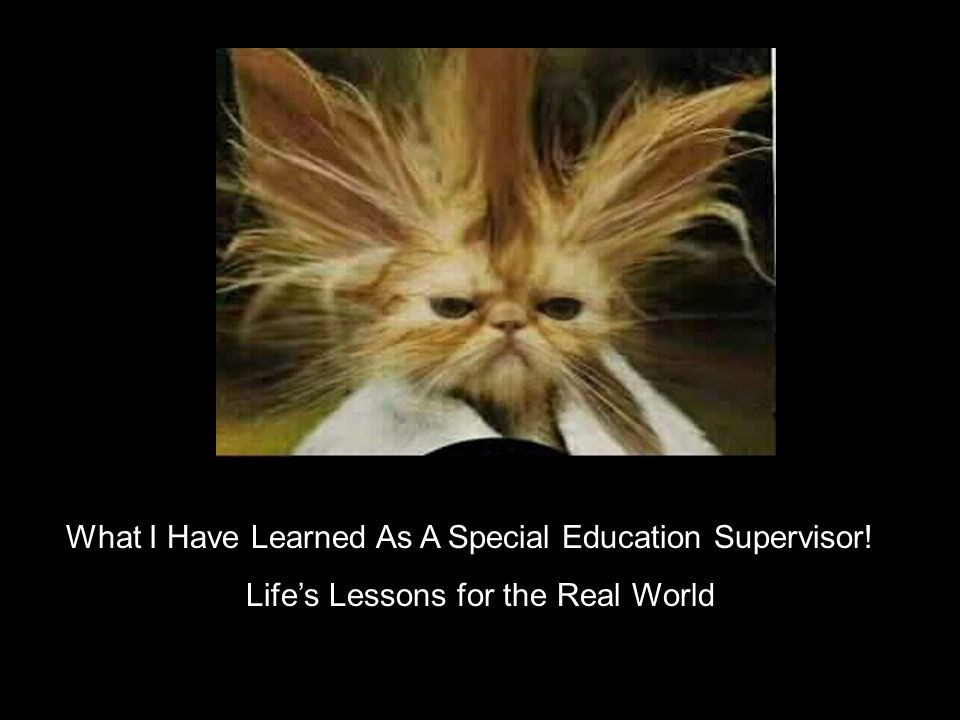 What I Have Learned As A Special Education Supervisor! Lifes Lessons for the Real World