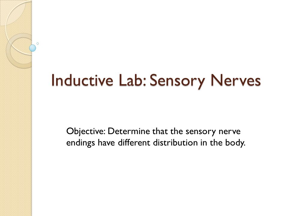 Inductive Lab: Sensory Nerves Objective: Determine that the sensory nerve endings have different distribution in the body.