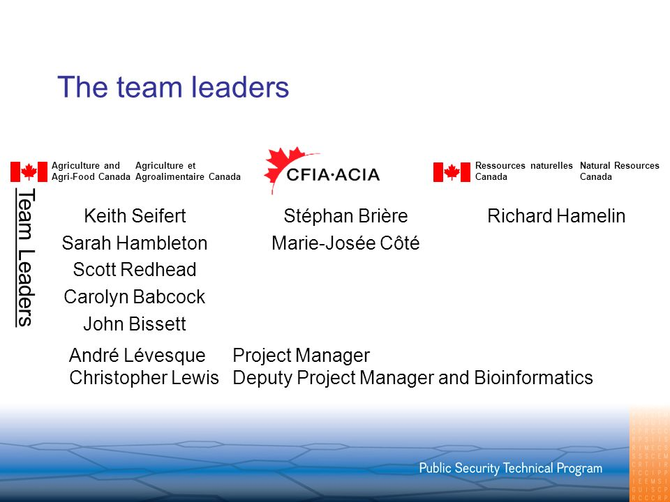 The team leaders Agriculture andAgriculture et Agri-Food CanadaAgroalimentaire Canada Ressources naturellesNatural ResourcesCanada Richard HamelinStéphan Brière Marie-Josée Côté Keith Seifert Sarah Hambleton Scott Redhead Carolyn Babcock John Bissett Team Leaders André LévesqueProject Manager Christopher LewisDeputy Project Manager and Bioinformatics