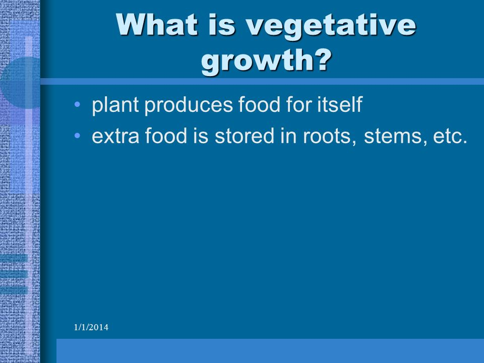 1/1/2014 What is vegetative growth.