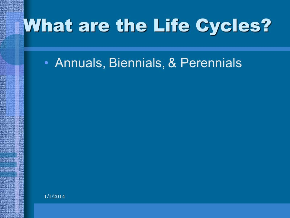 1/1/2014 What are the Life Cycles Annuals, Biennials, & Perennials