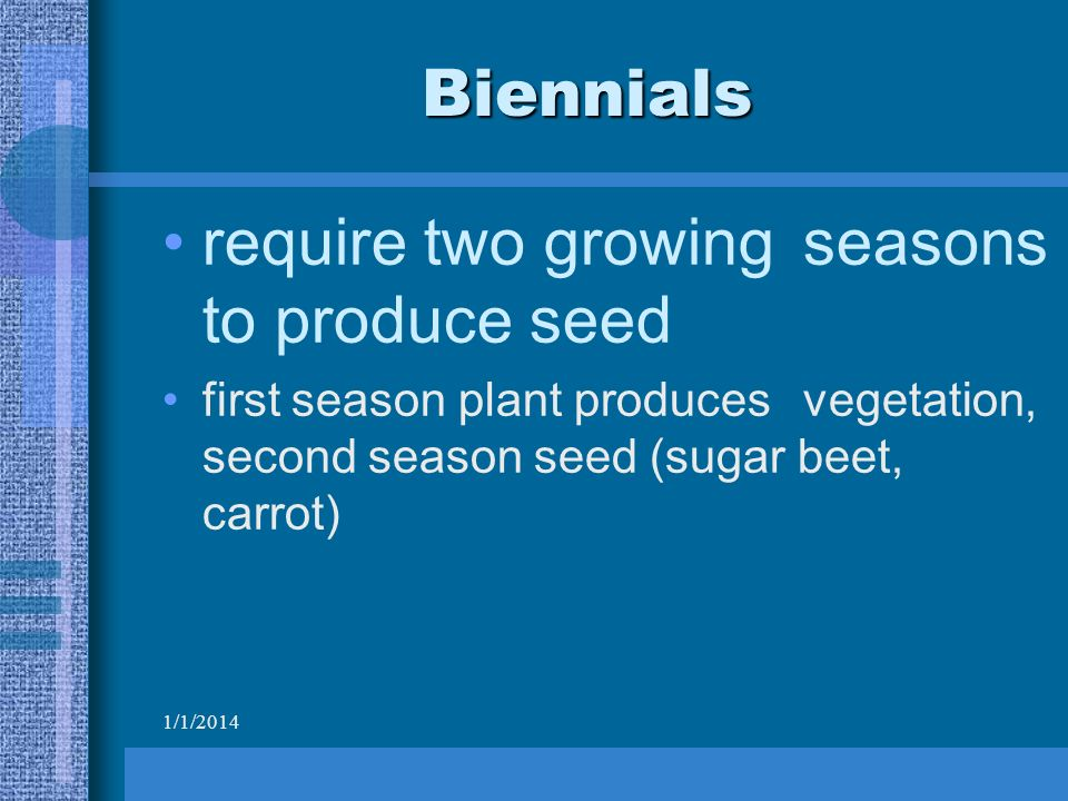 1/1/2014 Biennials require two growing seasons to produce seed first season plant produces vegetation, second season seed (sugar beet, carrot)