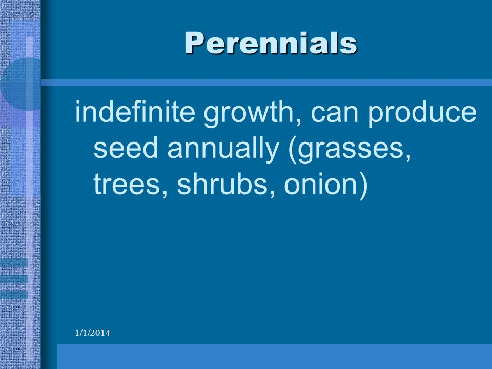 1/1/2014 Perennials indefinite growth, can produce seed annually (grasses, trees, shrubs, onion)