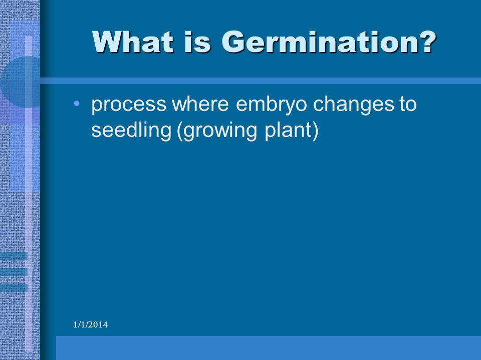 1/1/2014 What is Germination process where embryo changes to seedling (growing plant)