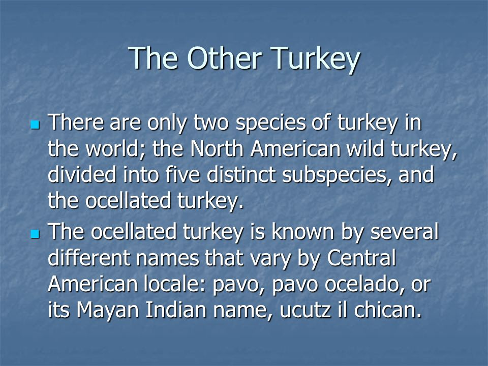 The Other Turkey There are only two species of turkey in the world; the North American wild turkey, divided into five distinct subspecies, and the ocellated turkey.