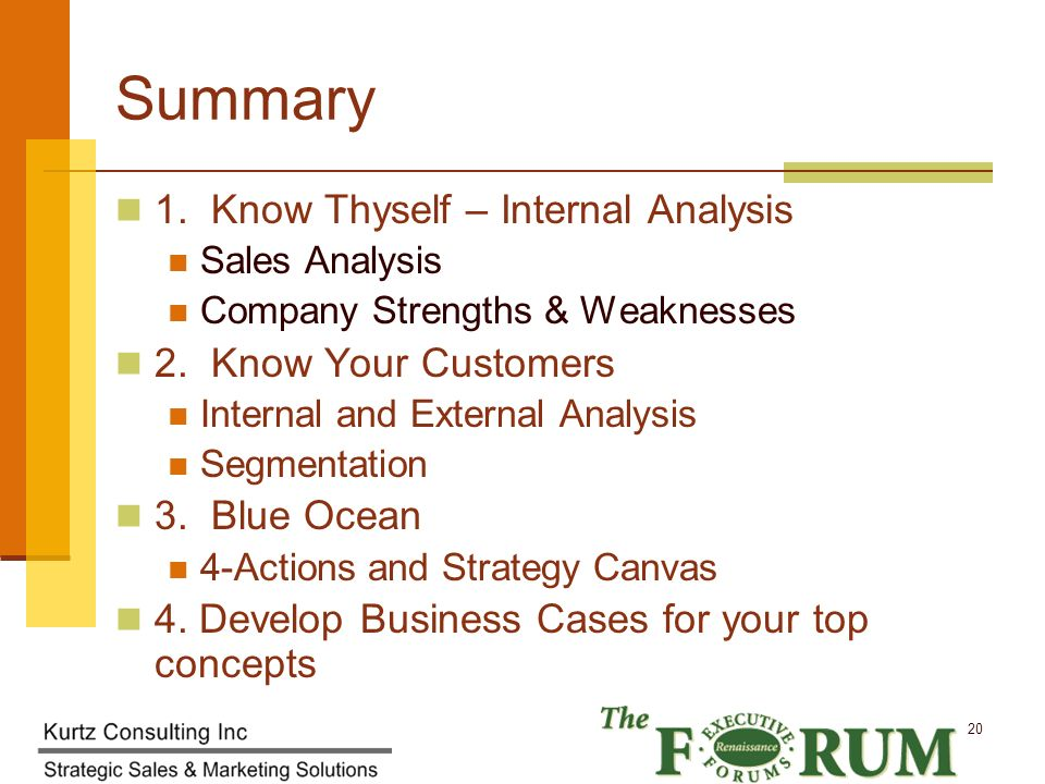 Kurtz Consulting Inc 20 Summary 1.