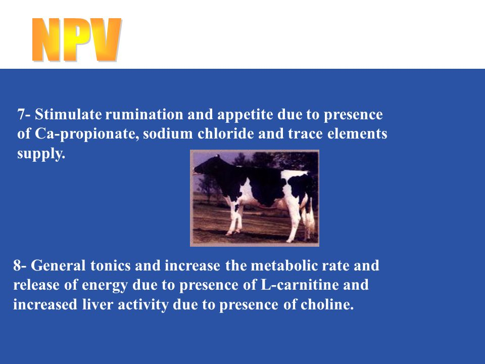 7- Stimulate rumination and appetite due to presence of Ca-propionate, sodium chloride and trace elements supply.