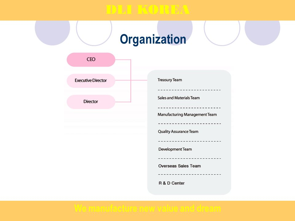 Organization DLI KOREA We manufacture new value and dream