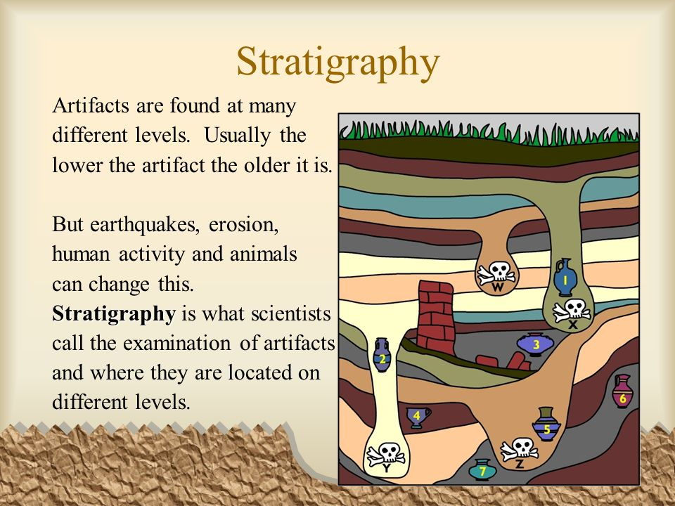 Stratigraphy Artifacts are found at many different levels.