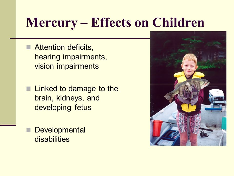Mercury – Effects on Children Attention deficits, hearing impairments, vision impairments Linked to damage to the brain, kidneys, and developing fetus Developmental disabilities