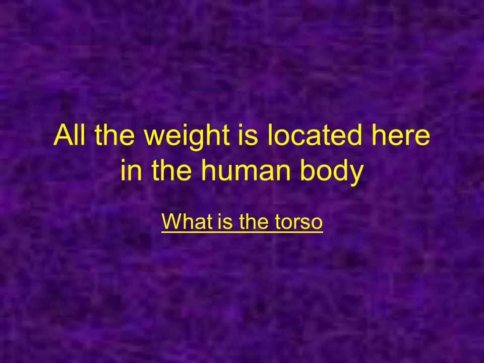 All the weight is located here in the human body What is the torso