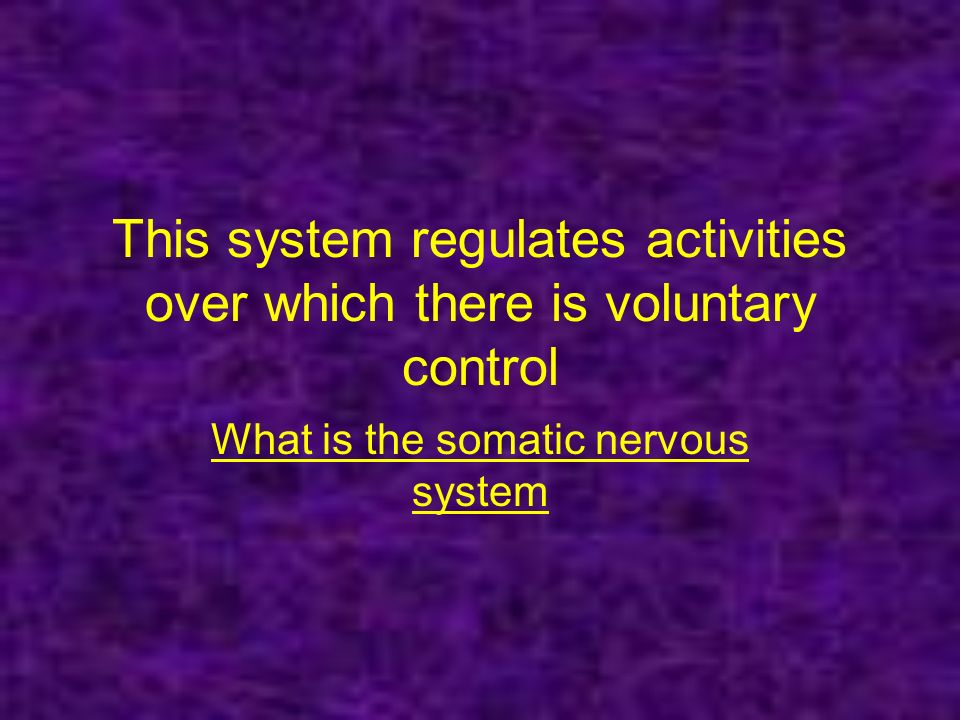 This system regulates activities over which there is voluntary control What is the somatic nervous system