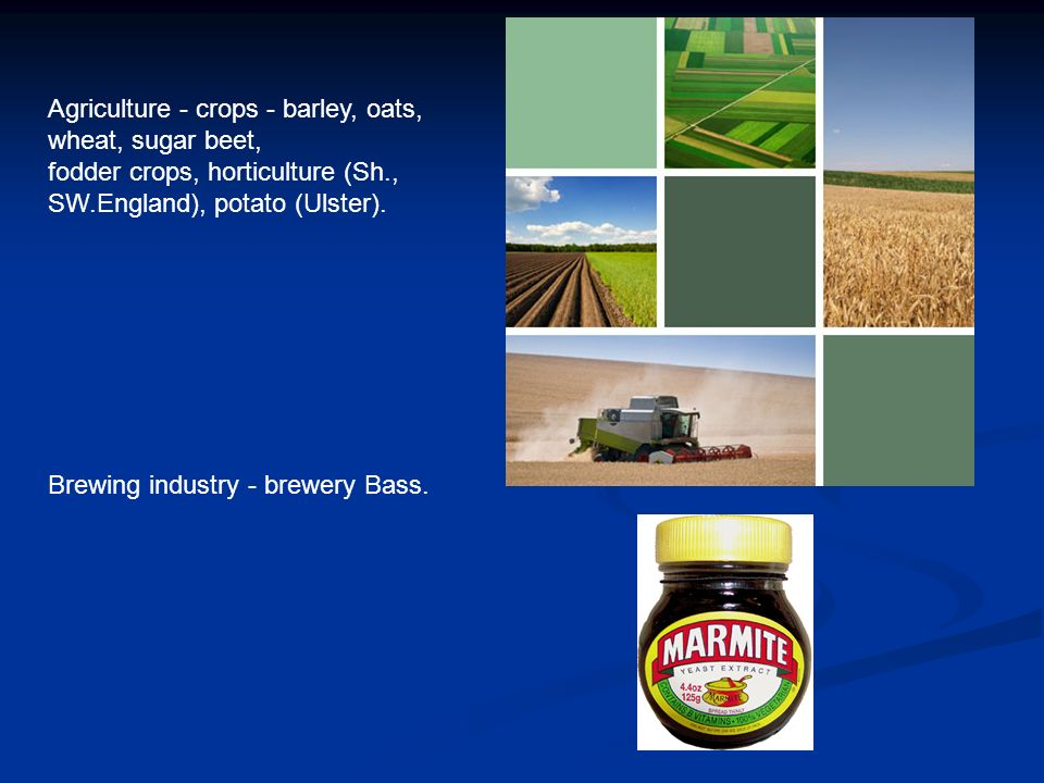 Agriculture - crops - barley, oats, wheat, sugar beet, fodder crops, horticulture (Sh., SW.England), potato (Ulster).