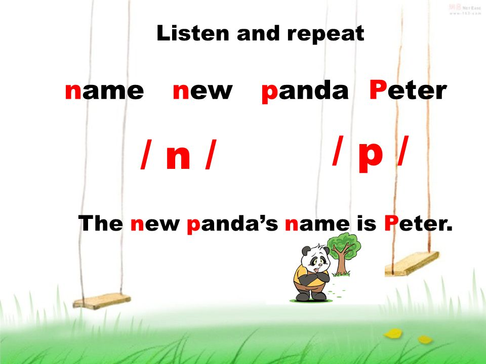 Listen and repeat name new panda Peter The new pandas name is Peter. / n / / p /