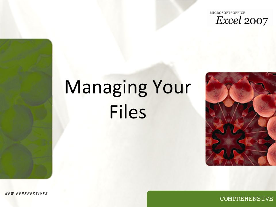 COMPREHENSIVE Managing Your Files