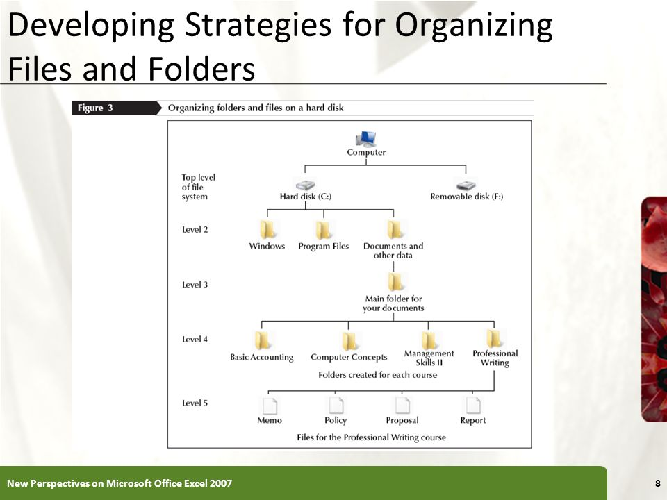 XP Developing Strategies for Organizing Files and Folders 8New Perspectives on Microsoft Office Excel 2007