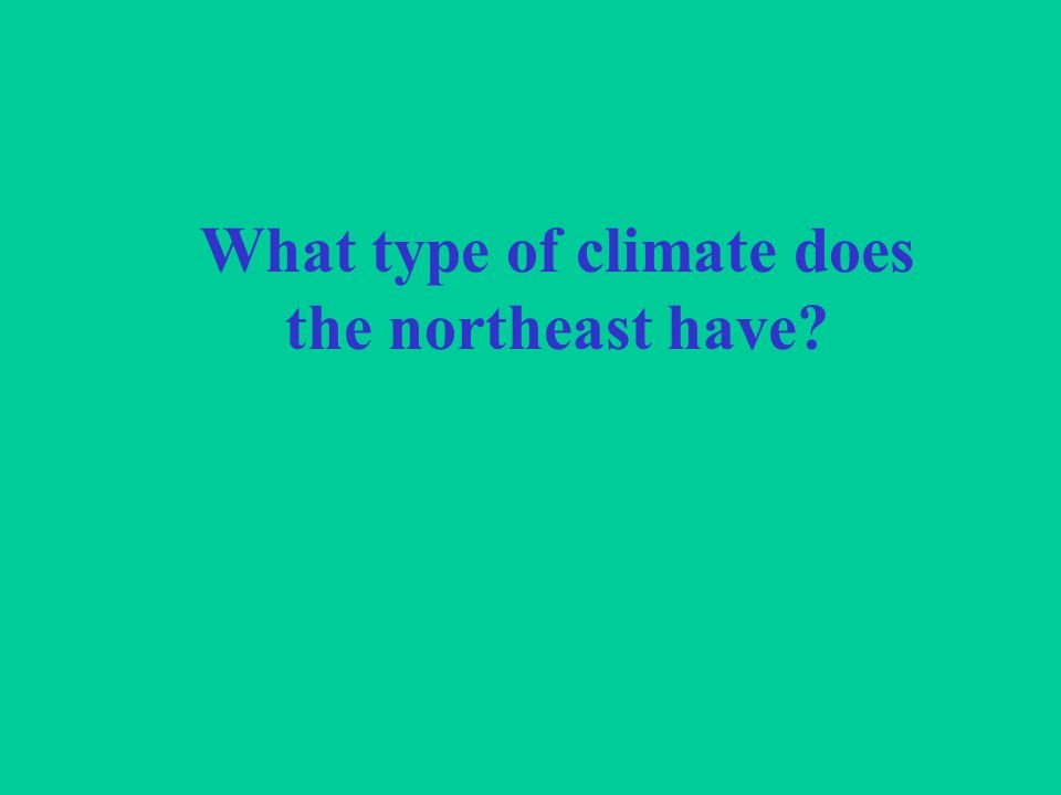 What type of climate does the northeast have