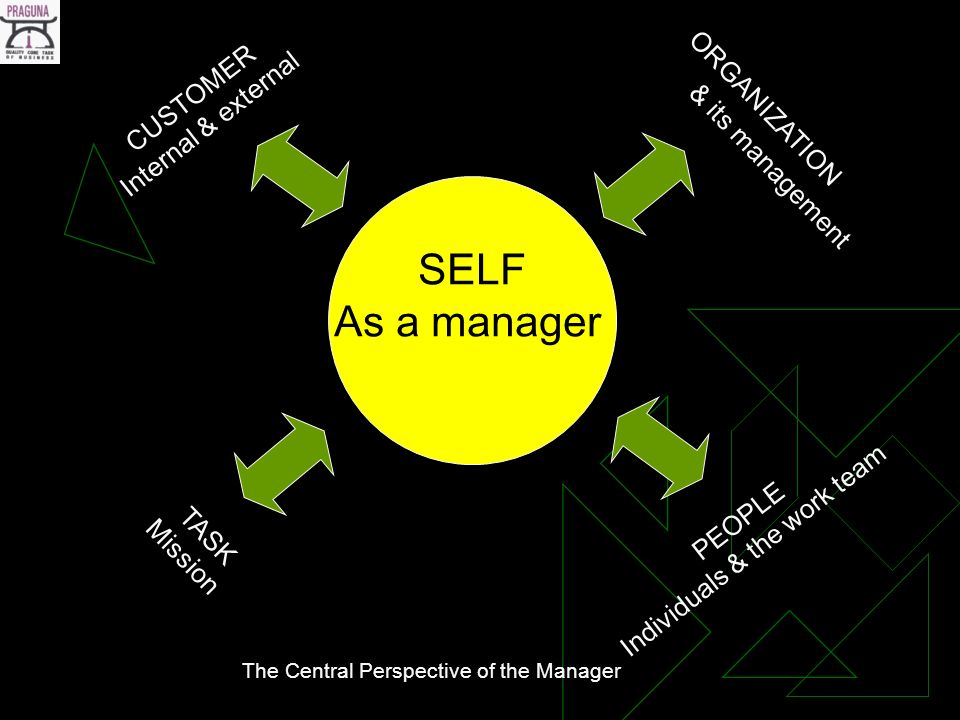 SELF As a manager CUSTOMER Internal & external PEOPLE Individuals & the work team ORGANIZATION & its management TASK Mission The Central Perspective of the Manager