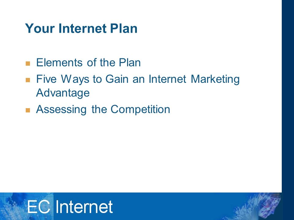 Your Internet Plan Elements of the Plan Five Ways to Gain an Internet Marketing Advantage Assessing the Competition