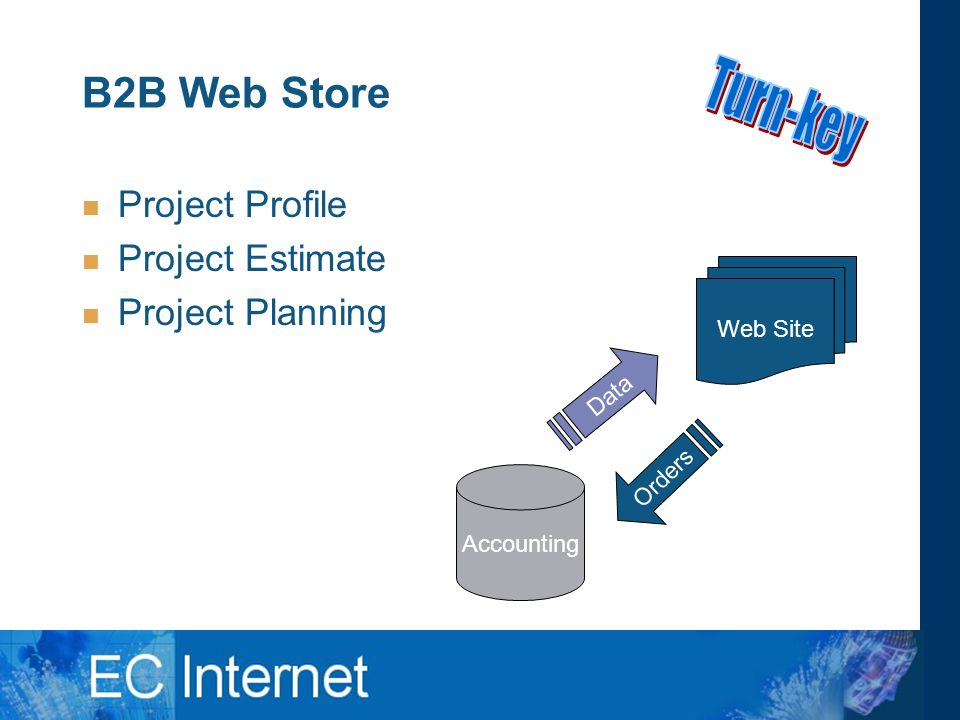 B2B Web Store Project Profile Project Estimate Project Planning Web Site Accounting Data Orders