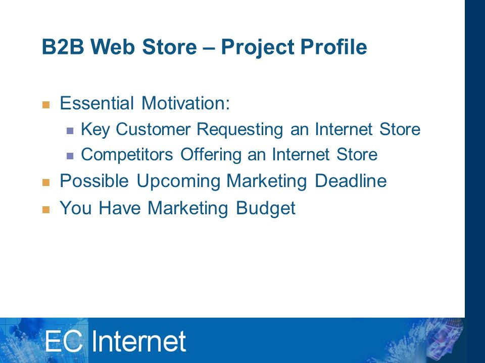 B2B Web Store – Project Profile Essential Motivation: Key Customer Requesting an Internet Store Competitors Offering an Internet Store Possible Upcoming Marketing Deadline You Have Marketing Budget