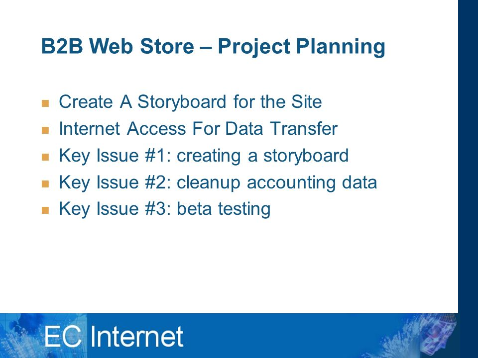 B2B Web Store – Project Planning Create A Storyboard for the Site Internet Access For Data Transfer Key Issue #1: creating a storyboard Key Issue #2: cleanup accounting data Key Issue #3: beta testing