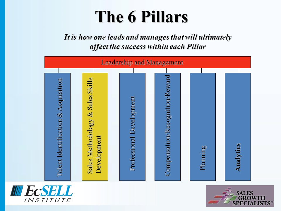Talent Identification & Acquisition Sales Methodology & Sales Skills Development Professional Development Planning Compensation/Recognition/Reward Analytics Leadership and Management The 6 Pillars It is how one leads and manages that will ultimately affect the success within each Pillar
