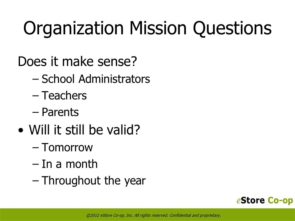 Organization Mission Questions Does it make sense.