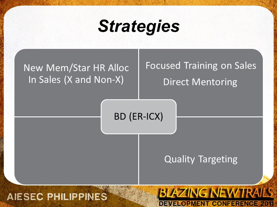 Strategies New Mem/Star HR Alloc In Sales (X and Non-X) Focused Training on Sales Direct Mentoring Quality Targeting BD (ER-ICX)