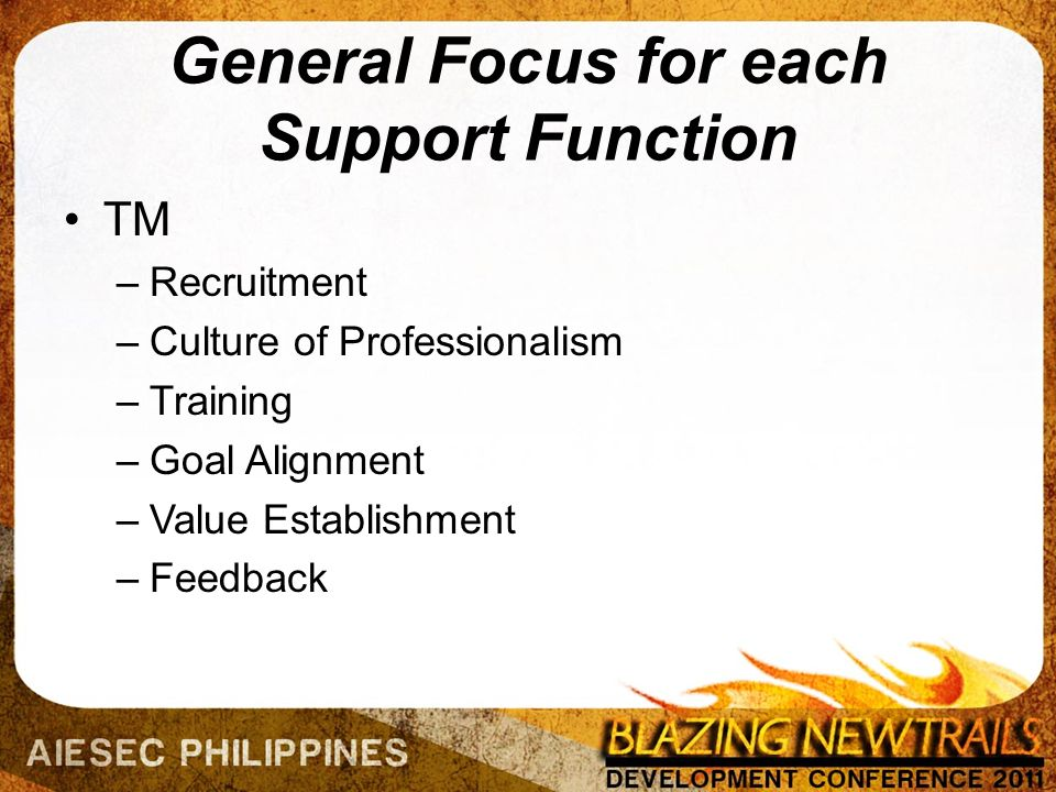 General Focus for each Support Function TM –Recruitment –Culture of Professionalism –Training –Goal Alignment –Value Establishment –Feedback