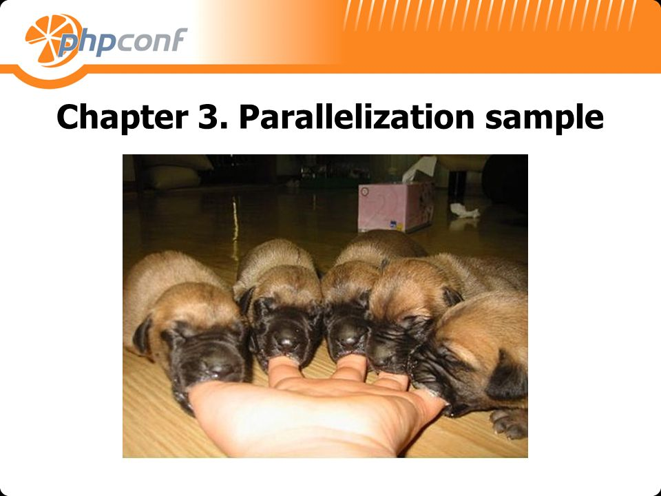 Chapter 3. Parallelization sample