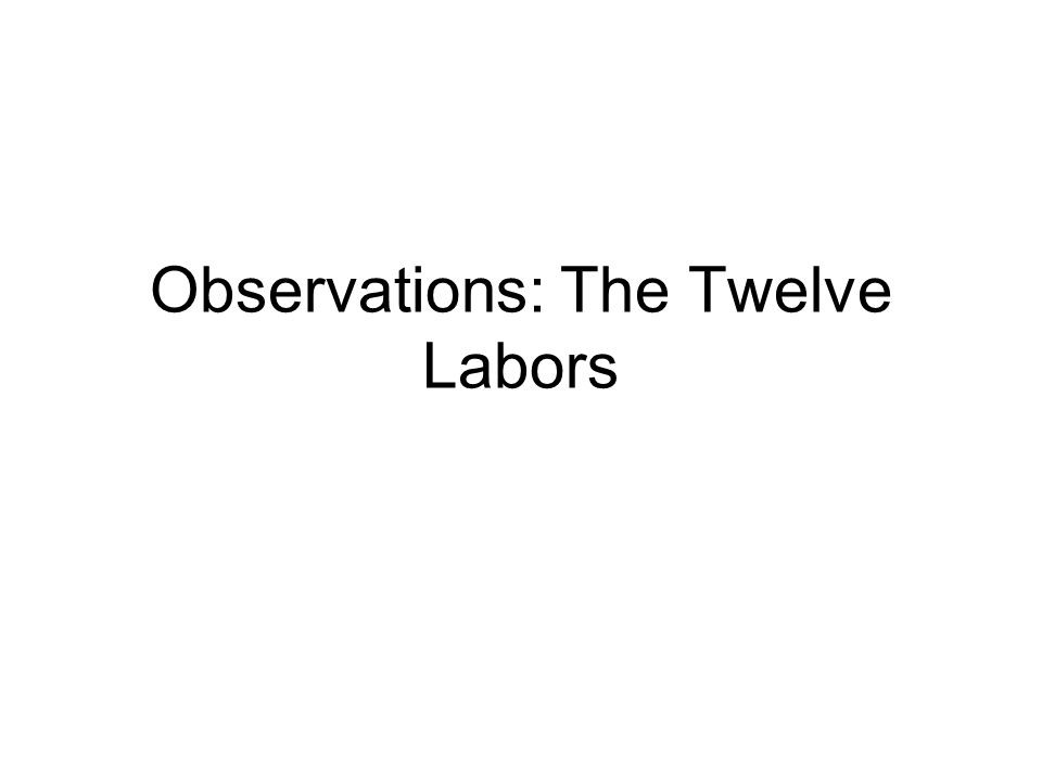 Observations: The Twelve Labors