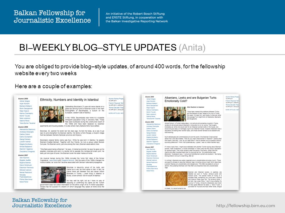 BI – WEEKLY BLOG–STYLE UPDATES (Anita) You are obliged to provide blog–style updates, of around 400 words, for the fellowship website every two weeks Here are a couple of examples:
