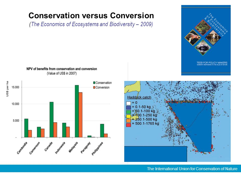 The International Union for Conservation of Nature Conservation versus Conversion (The Economics of Ecosystems and Biodiversity – 2009)