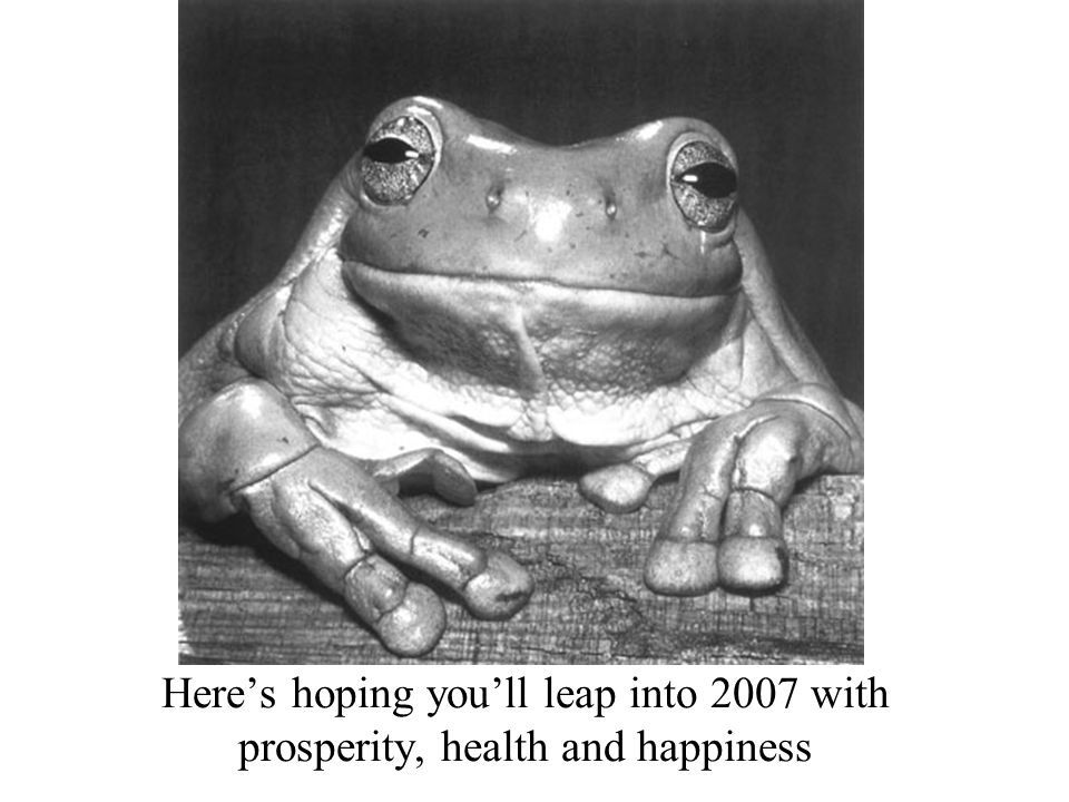 Heres hoping youll leap into 2007 with prosperity, health and happiness