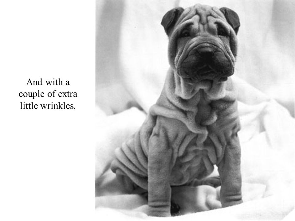 And with a couple of extra little wrinkles,