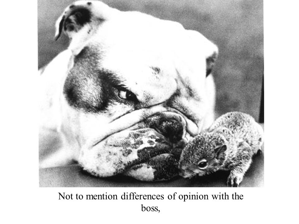 Not to mention differences of opinion with the boss,