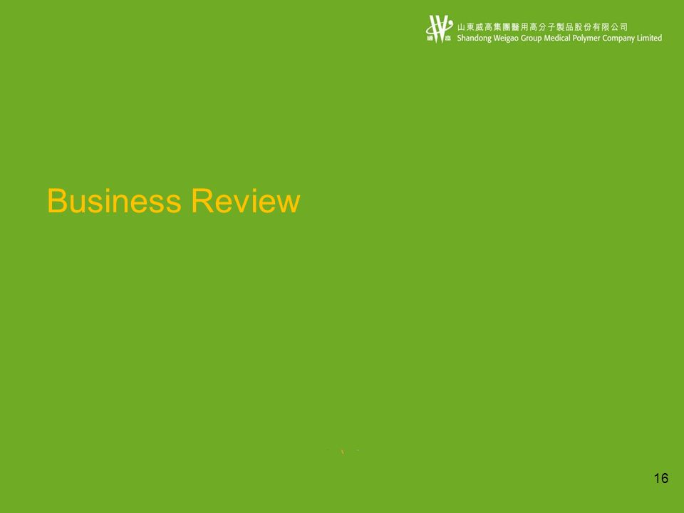 16 Business Review