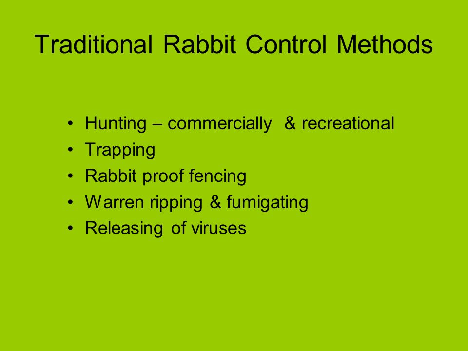 Traditional Rabbit Control Methods Hunting – commercially & recreational Trapping Rabbit proof fencing Warren ripping & fumigating Releasing of viruses