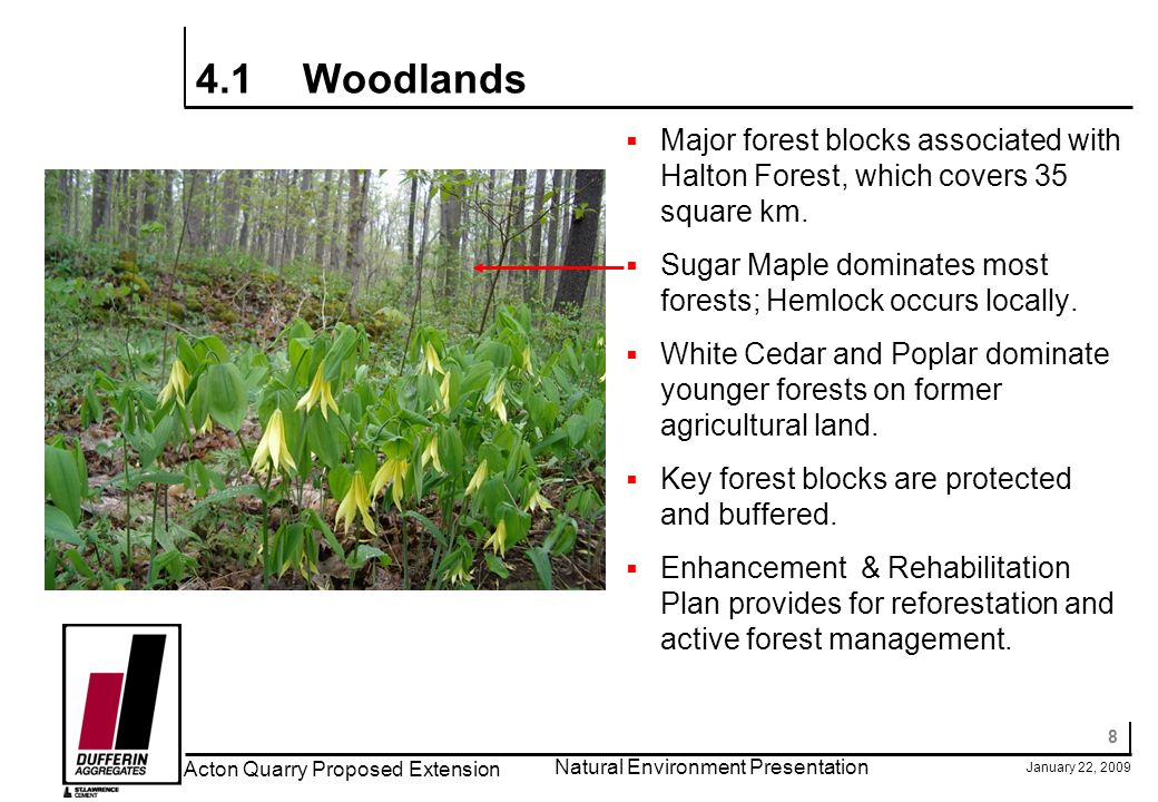 8 January 22, 2009 Acton Quarry Proposed Extension Natural Environment Presentation 4.1Woodlands Major forest blocks associated with Halton Forest, which covers 35 square km.