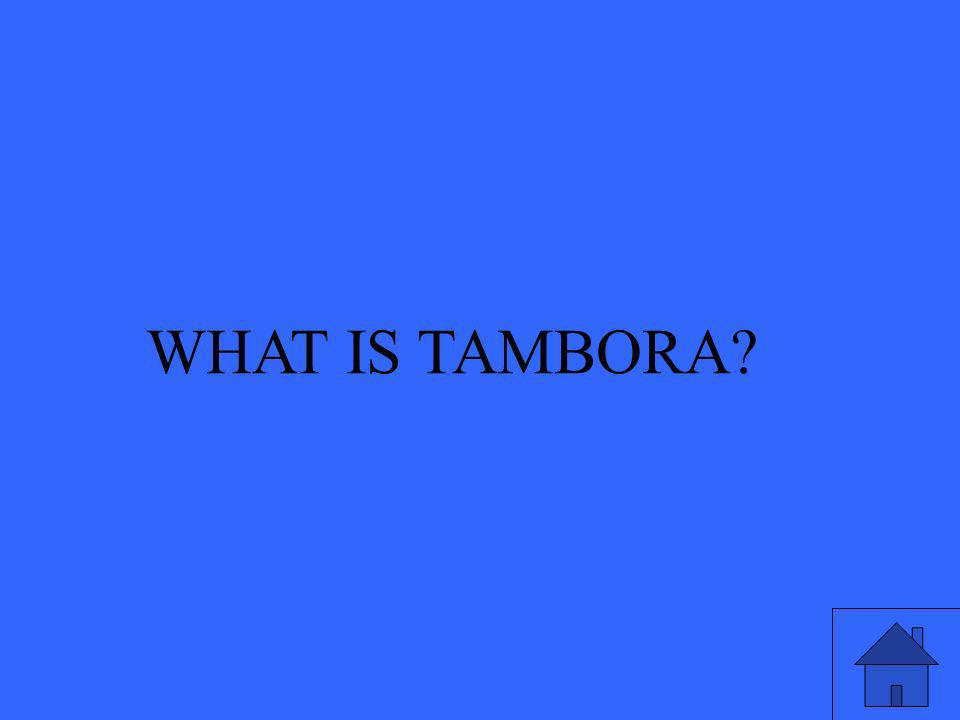 WHAT IS TAMBORA