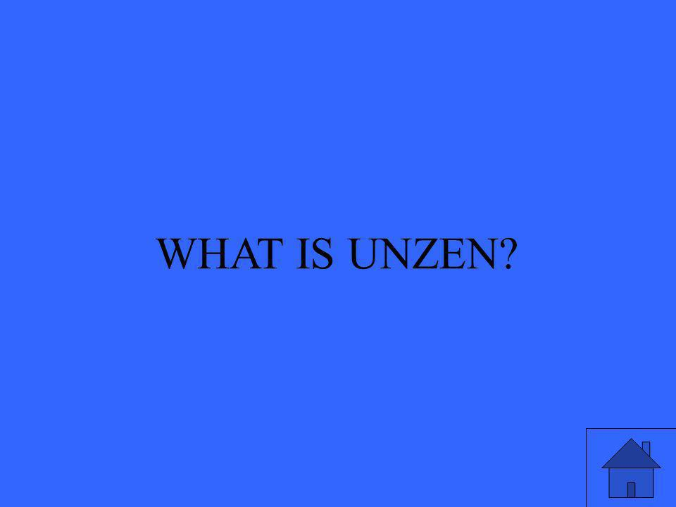 WHAT IS UNZEN