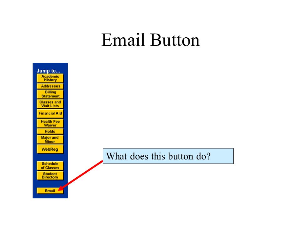 Email Button What does this button do