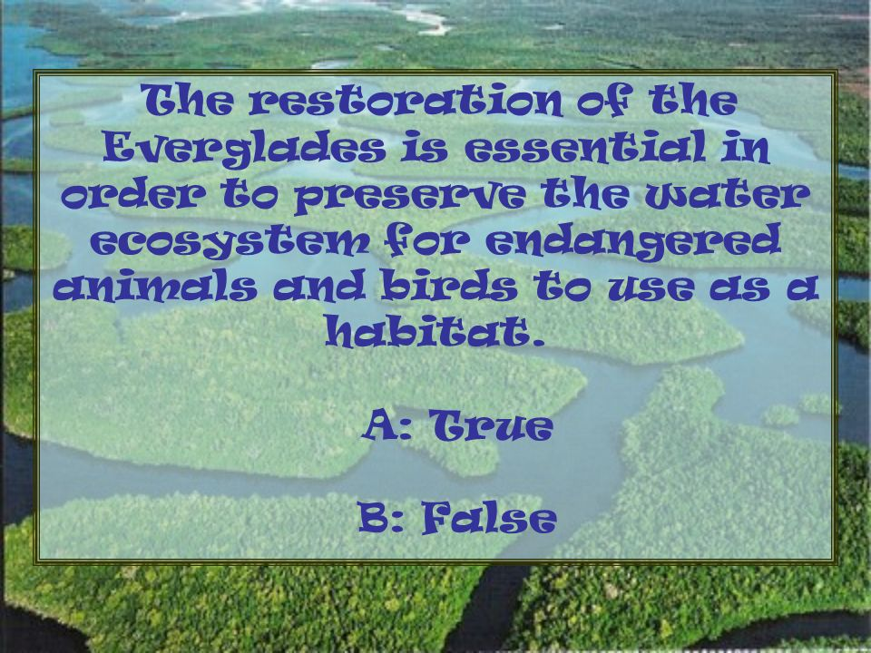 The restoration of the Everglades is essential in order to preserve the water ecosystem for endangered animals and birds to use as a habitat.