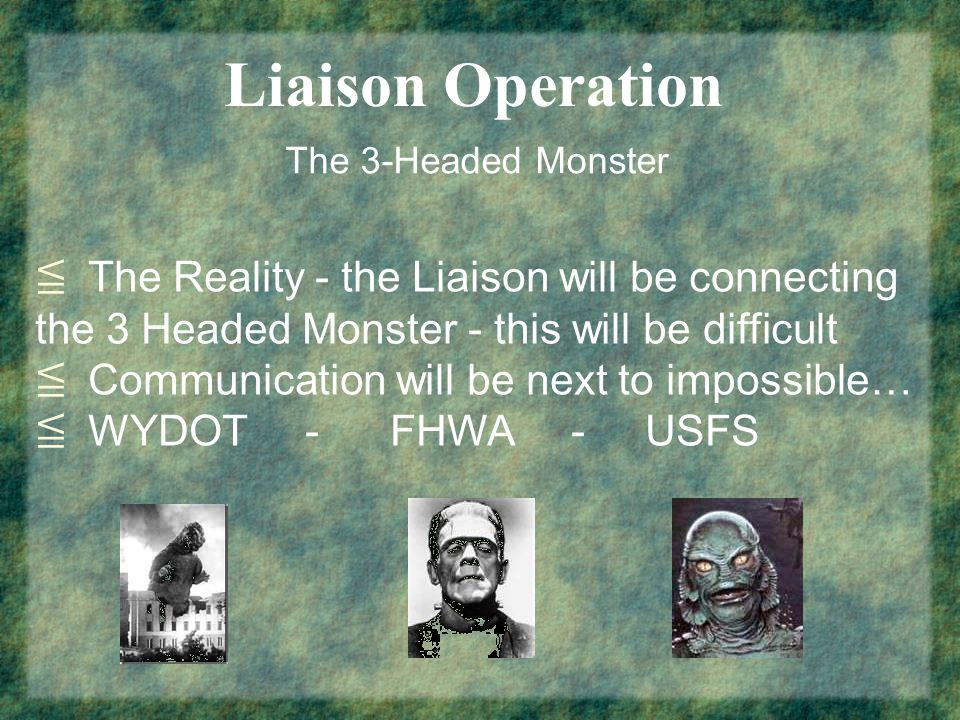 Liaison Operation The 3-Headed Monster The Reality - the Liaison will be connecting the 3 Headed Monster - this will be difficult Communication will be next to impossible… WYDOT - FHWA - USFS
